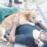 เรื่องราวความรักของสุนัขและเจ้าของ