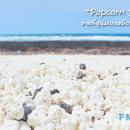 Popcorn Beach หาดขาว ที่ปกคลุมไปด้วยป๊อปคอร์นสีขาว