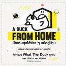 """""""A Duck From Home"""" ส่งต่อความสุขง่าย ๆ แม้อยู่บ้าน"""